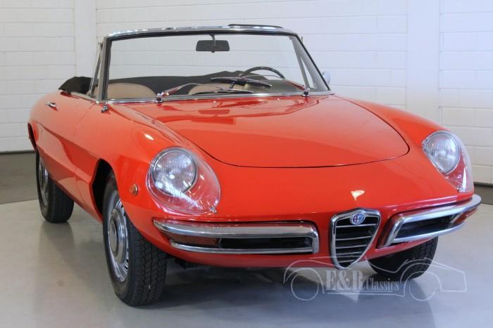 Alfa-Romeo Veloce Duetto Spider   a vendre