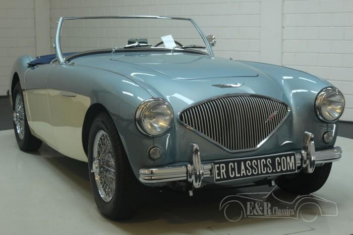 Austin-Healey 100-4 BN1 1954  a vendre