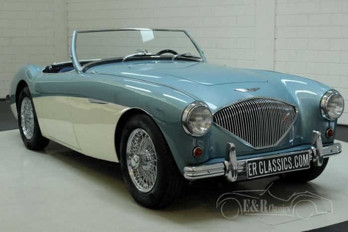 Austin Healey 100-4 BN2 1955  a vendre