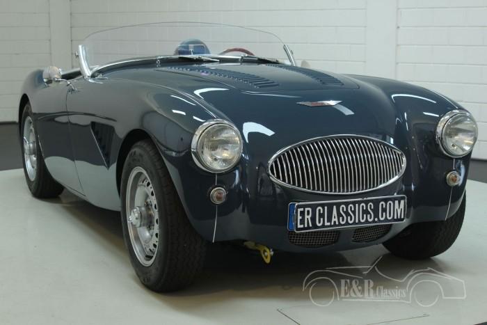 Austin Healey 100-4 BN1 1955  a vendre