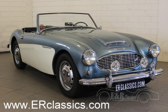 Austin Healey 3000 MKI 1959 a vendre