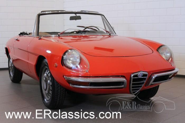 Alfa Romeo Duetto Spider 1969 a vendre