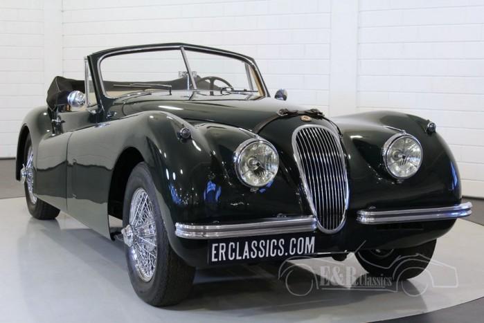 Jaguar XK120 DHC 1953 a vendre