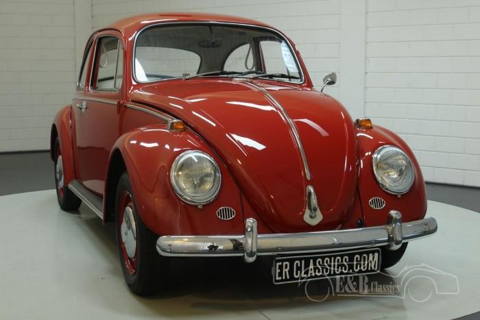 Volkswagen Coccinelle 1966 a vendre