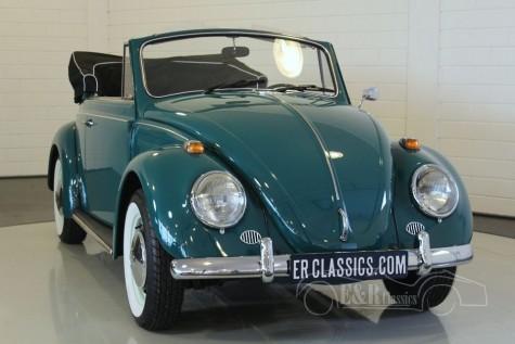Volkswagen Beetle Cabriolet 1966 a vendre