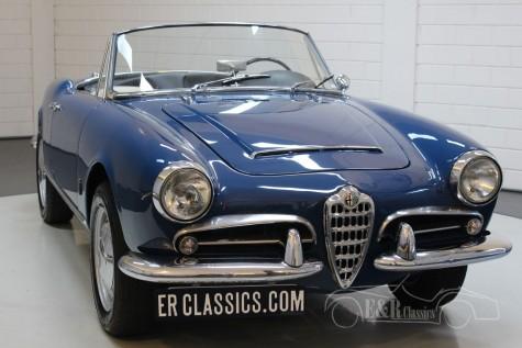 Alfa Romeo Giulia 1600 Spider 1963 a vendre