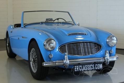 Austin-Healey 3000 MKI 1960  a vendre