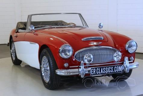 Austin-Healey 3000 MK3 1965 a vendre