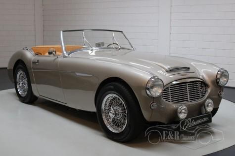 Austin Healey MK2 BT7 1962  a vendre