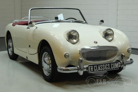 Austin Healey Sprite MK1 1960 a vendre