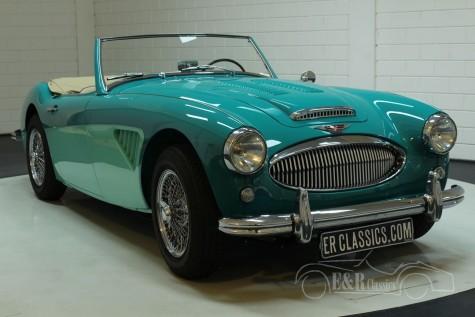 Austin Healey 3000 MK2 1960  a vendre