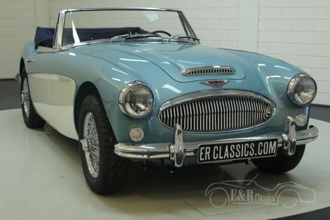 Austin Healey 3000 MK3 BJ8 1965  a vendre