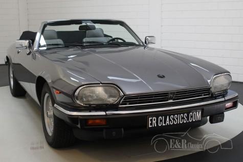 Jaguar XJS Cabriolet V12 1991 a vendre