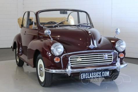Morris Minor Tourer 1000 Cabriolet 1964 a vendre