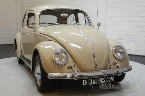 Volkswagen Beetle 1200 Dickholmer 1959 a vendre