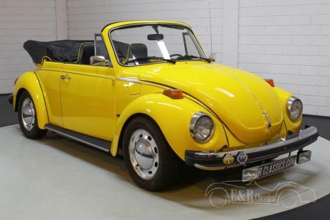 Volkswagen Beetle Cabriolet a vendre