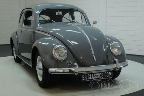 Volkswagen Coccinelle 1953  a vendre