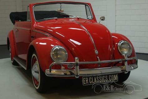 VW Coccinelle cabriolet 1959  a vendre