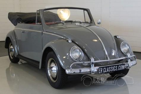 Volkswagen Beetle Cabriolet 1963 a vendre