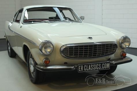 Volvo P1800S Coupe 1966  a vendre